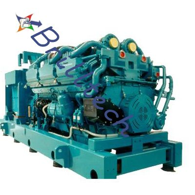 Diesel Generator set In Assam>